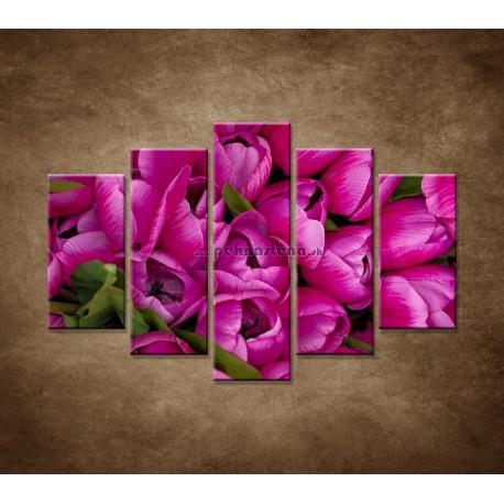 Obrazy na stenu - Krásne tulipány - 5dielny 150x100cm