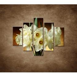 Obrazy na stenu - Narcisy - 5dielny 100x80cm