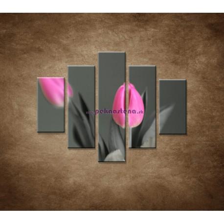 Obrazy na stenu - Ružové tulipány - 5dielny 100x80cm