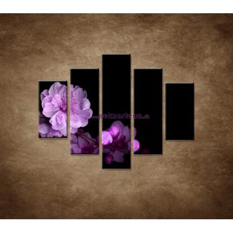 Obrazy na stenu - Čerešňový kvet - 5dielny 100x80cm