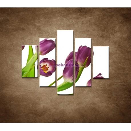 Obrazy na stenu - Fialové tulipány - 5dielny 100x80cm