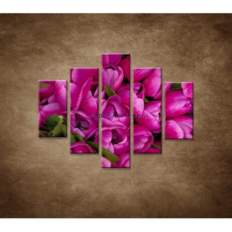Obrazy na stenu - Krásne tulipány - 5dielny 100x80cm