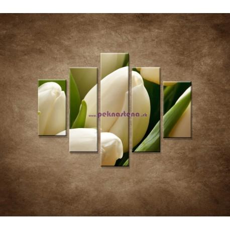 Obrazy na stenu - Kytica tulipánov - detail - 5dielny 100x80cm