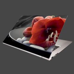 Nálepka na notebook - Červená amarylka