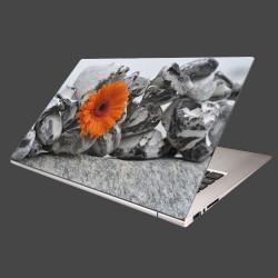 Nálepka na notebook - Oranžová gerbera a kamene