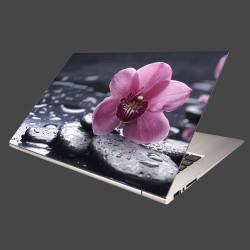 Nálepka na notebook - Ružová orchidea na kameni