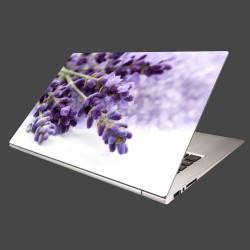 Nálepka na notebook - Kvet levandule