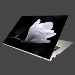 Nálepka na notebook - Kvet magnólie