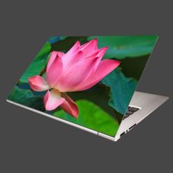 Nálepka na notebook - Lekno 2