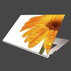 Nálepka na notebook - Oranžová gerbera