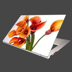Nálepka na notebook - Oranžové kaly