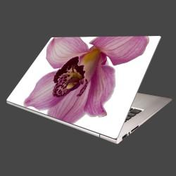 Nálepka na notebook - Orchidea - detail