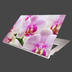Nálepka na notebook - Ružová orchidea