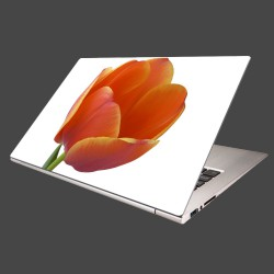 Nálepka na notebook - Tulipán - detail