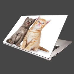 Nálepka na notebook - Dve mačiatká