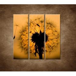 Obrazy na stenu - Makro - Púpava - 3dielny 90x90cm