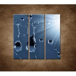 Obrazy na stenu - Makro - Kvapky rosy - 3dielny 90x90cm