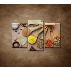 Obrazy na stenu - Korenie - 3dielny 75x50cm