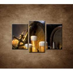 Obrazy na stenu - Pivný raj - 3dielny 75x50cm