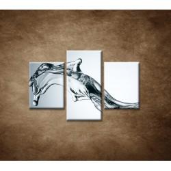 Obrazy na stenu - Tečúca voda - 3dielny 90x60cm