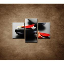 Obrazy na stenu - Čierny kameň s červeným lupeňom  - 3dielny 90x60cm