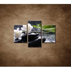 Obrazy na stenu - Sakura na kameni - 3dielny 90x60cm