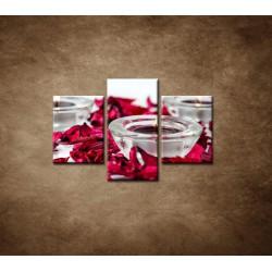 Obrazy na stenu - Aromaterapia - 3dielny 90x60cm