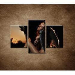 Obrazy na stenu - Anjel - 3dielny 90x60cm