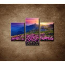 Obrazy na stenu - Západ slnka  - 3dielny 90x60cm