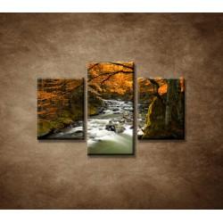 Obrazy na stenu - Jesenná krajina  - 3dielny 90x60cm