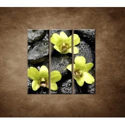 Obrazy na stenu - Kamene s kvapkami a orchideou - 3dielny 90x90cm