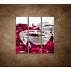 Obrazy na stenu - Aromaterapia - 3dielny 90x90cm