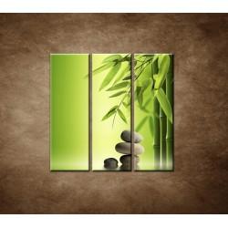 Obrazy na stenu - Bambus a kamene - 3dielny 90x90cm