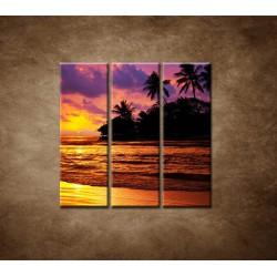 Obrazy na stenu - Farebná príroda - 3dielny 90x90cm