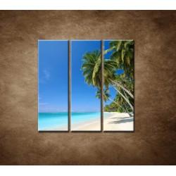 Obrazy na stenu - Pláž s palmami - 3dielny 90x90cm