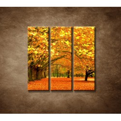 Obrazy na stenu - Park - 3dielny 90x90cm