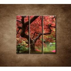 Obrazy na stenu - Japonský javor - 3dielny 90x90cm