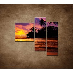 Obrazy na stenu - Farebná príroda - 3dielny 110x90cm