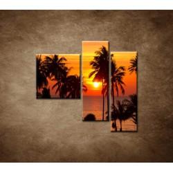 Obrazy na stenu - Západ slnka s palmami - 3dielny 110x90cm