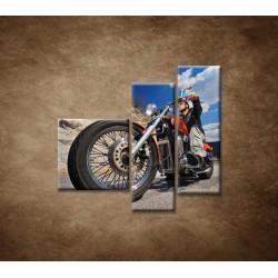 Obrazy na stenu - Motorkár - 3dielny 110x90cm