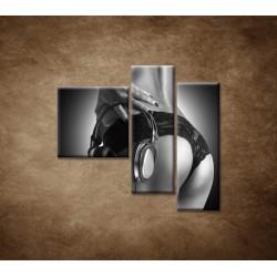 Obrazy na stenu - Nahá DJ-ka - 3dielny 110x90cm
