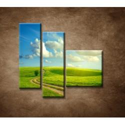 Obrazy na stenu - Letná krajina - 3dielny 110x90cm