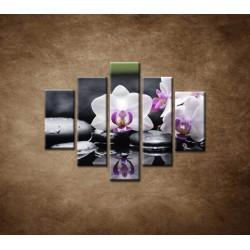 Obrazy na stenu - Ružová orchidea a kamene - 5dielny 100x80cm