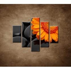 Obrazy na stenu - Oranžová gerbera na kameňoch - 5dielny 100x80cm