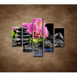 Obrazy na stenu - Kamene s kvetom - 5dielny 100x80cm