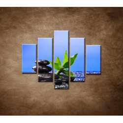 Obrazy na stenu - Bambusový výhonok na kameni - 5dielny 100x80cm