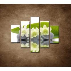 Obrazy na stenu - Biele kvety na kameňoch - 5dielny 100x80cm