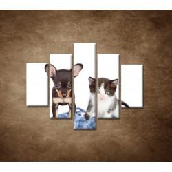 Obrazy na stenu - Nezbedníci - 5dielny 100x80cm