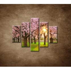 Obrazy na stenu - Kvitnúce čerešne - 5dielny 100x80cm