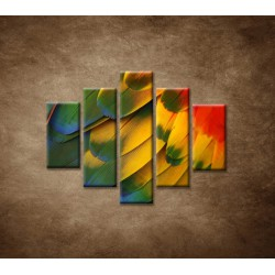 Obrazy na stenu - Farebné perie - 5dielny 100x80cm